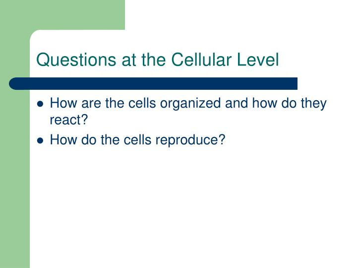 Questions at the Cellular Level