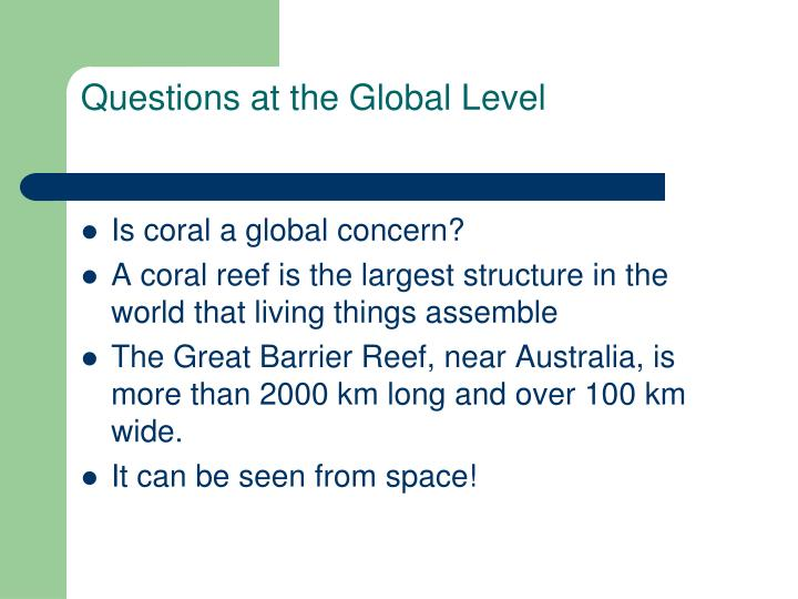 Questions at the Global Level