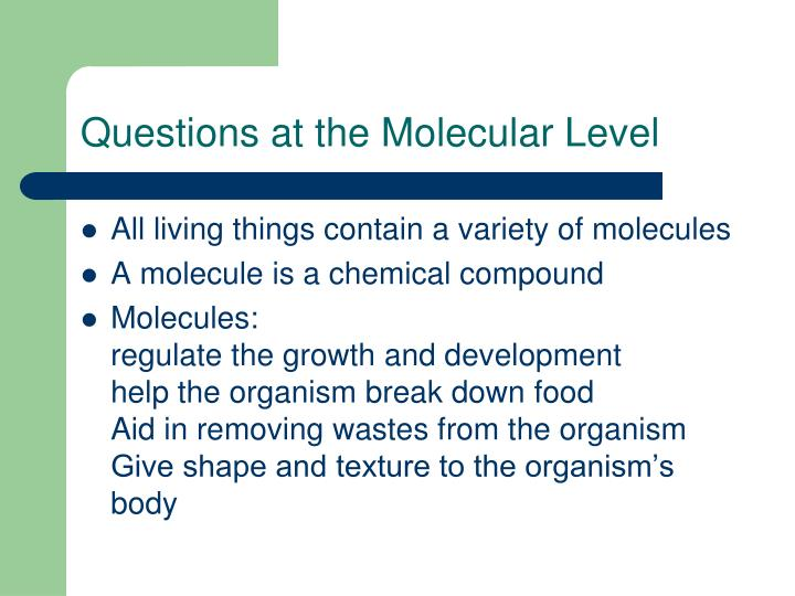 Questions at the Molecular Level