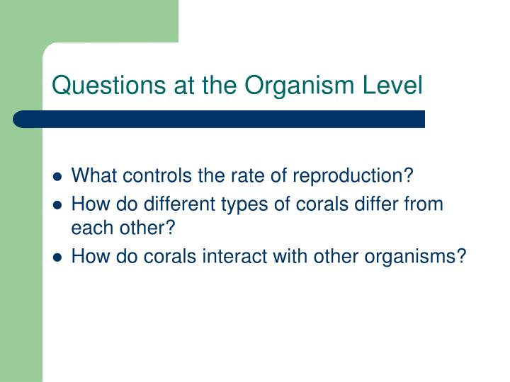 Questions at the Organism Level