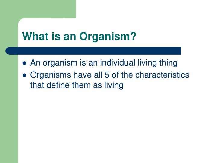 What is an Organism?