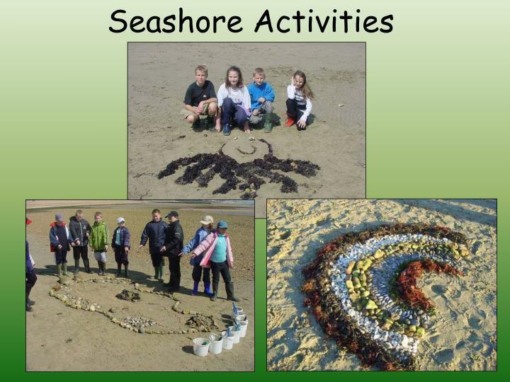 Seashore Activities
