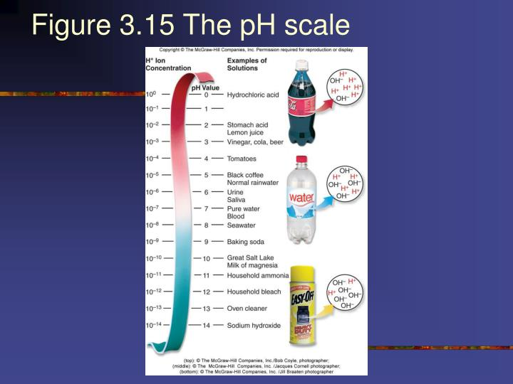 Figure 3.15 The pH scale