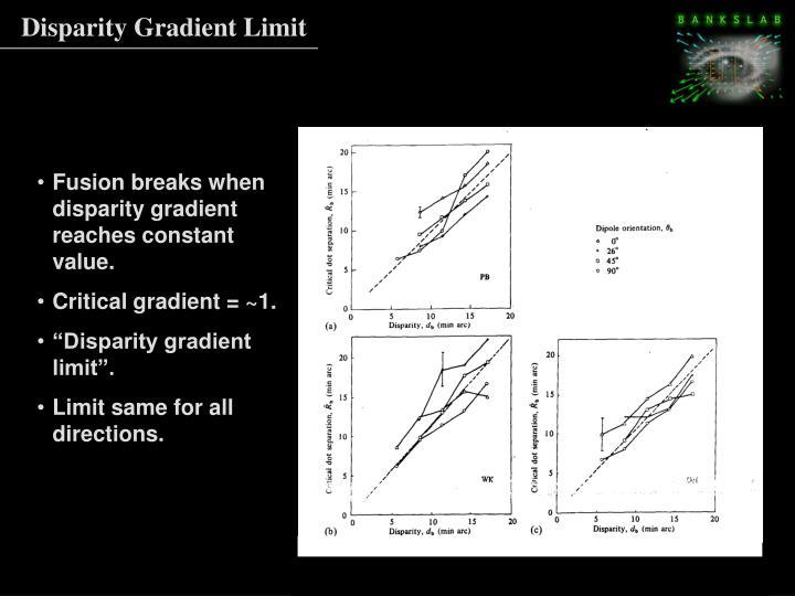 Disparity Gradient Limit