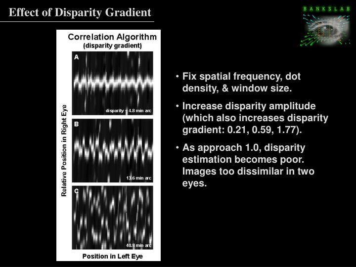Effect of Disparity Gradient
