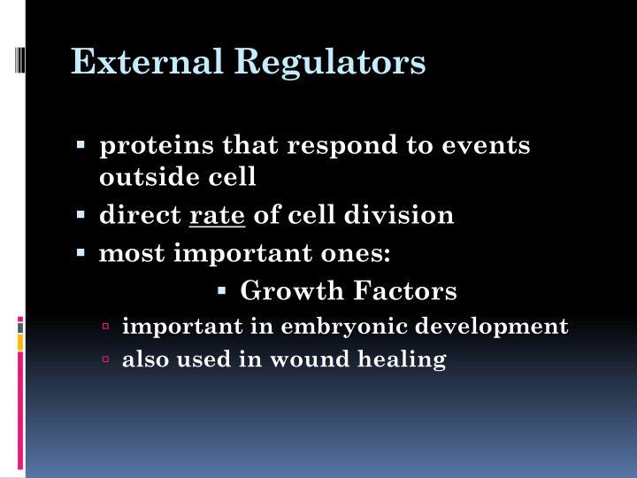 External Regulators