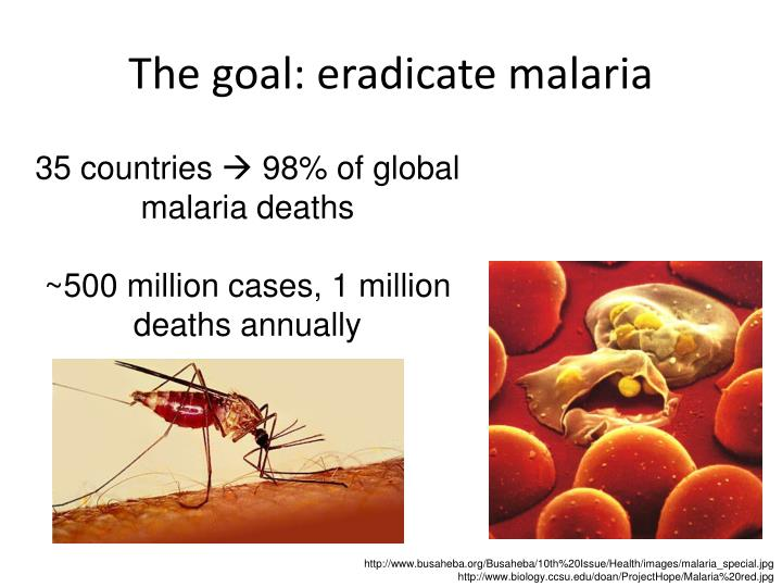 The goal: eradicate malaria
