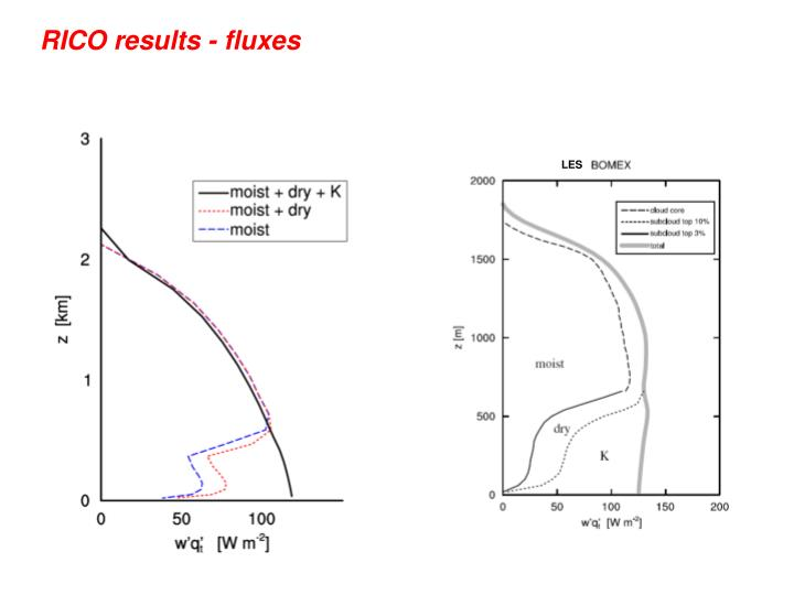RICO results - fluxes