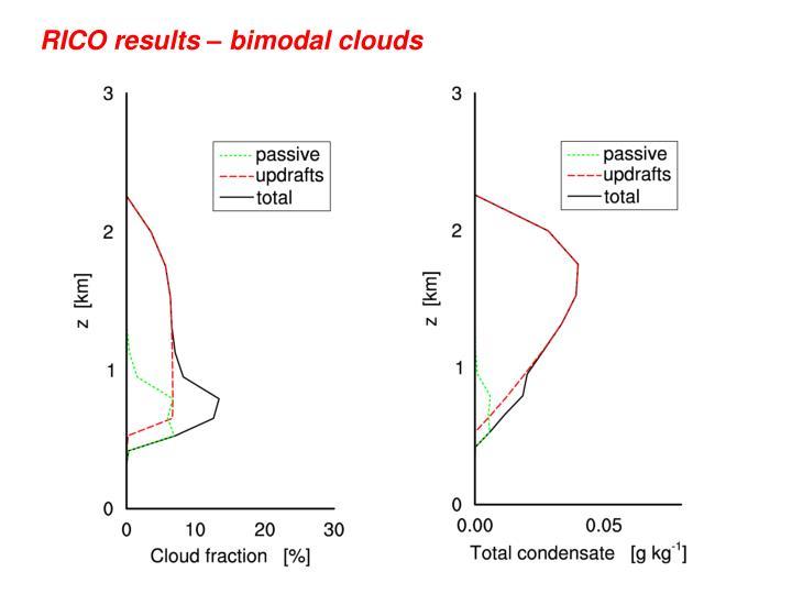 RICO results – bimodal clouds