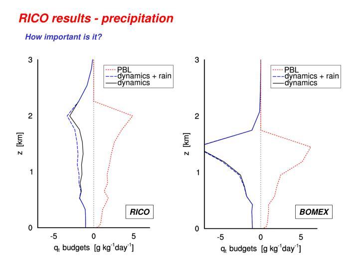 RICO results - precipitation