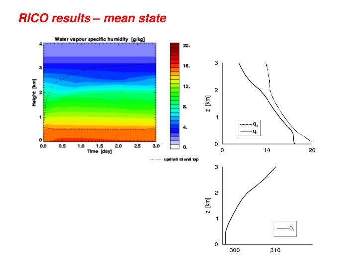 RICO results – mean state