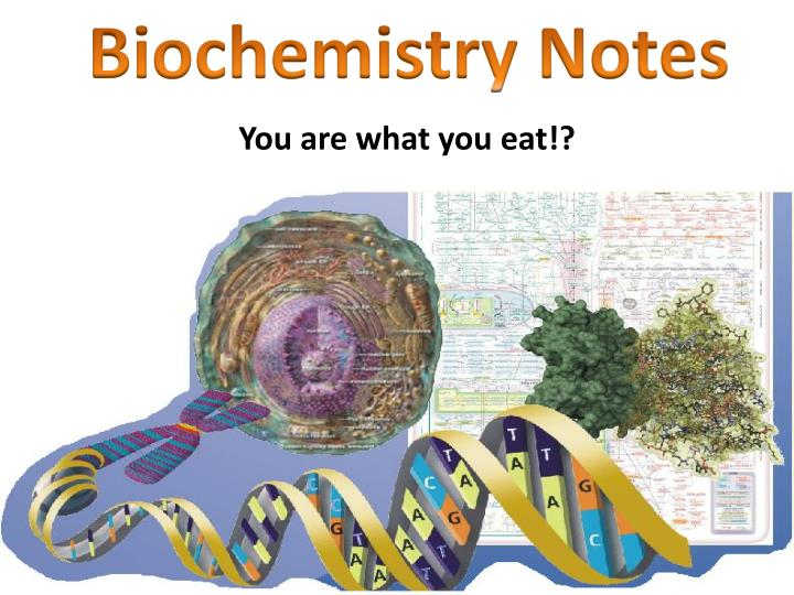 Biochemistry Notes