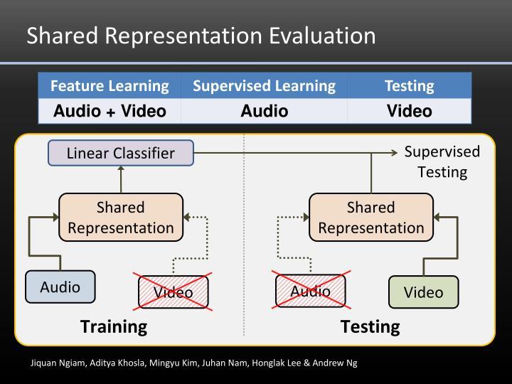 Shared Representation Evaluation