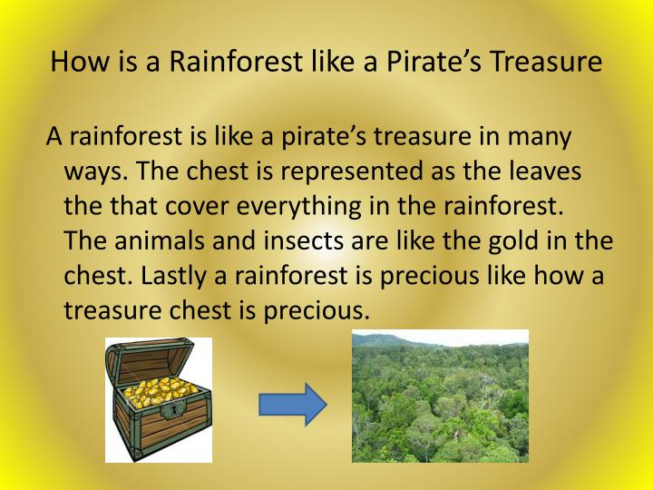 How is a Rainforest like a Pirate's Treasure