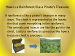 how is a rainforest like a pirate s treasure