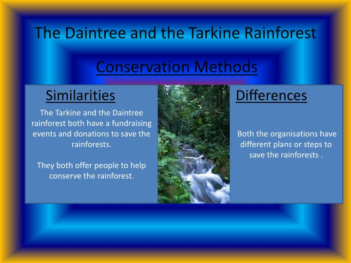 The Daintree and the Tarkine Rainforest