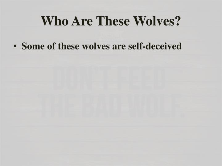 Who Are These Wolves?
