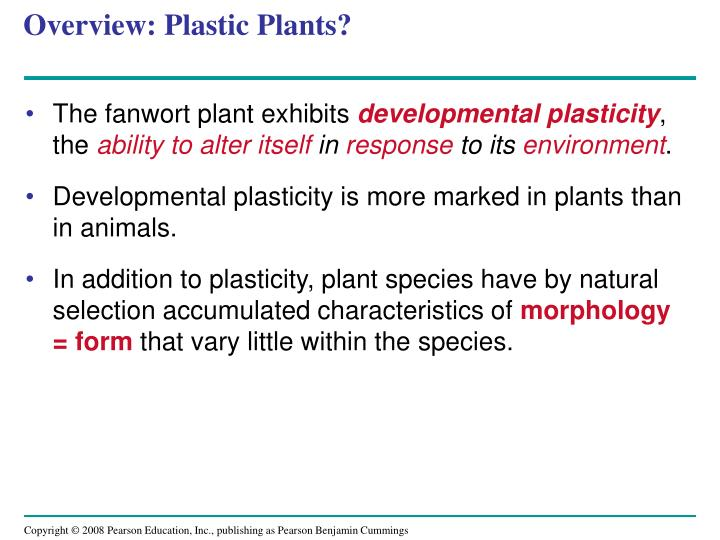 Overview plastic plants