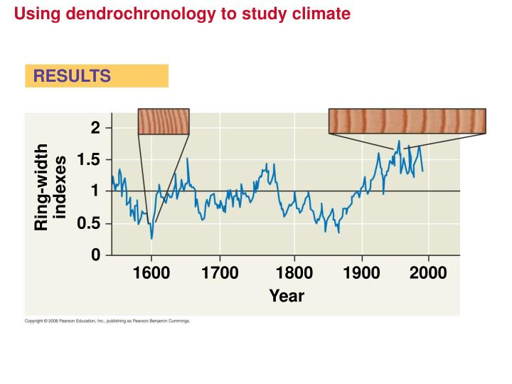 Using dendrochronology to study climate