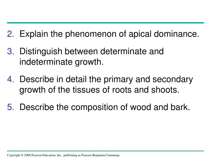 Explain the phenomenon of apical dominance.