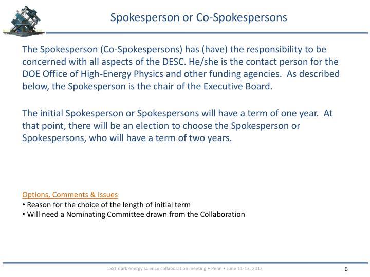 Spokesperson or Co-Spokespersons