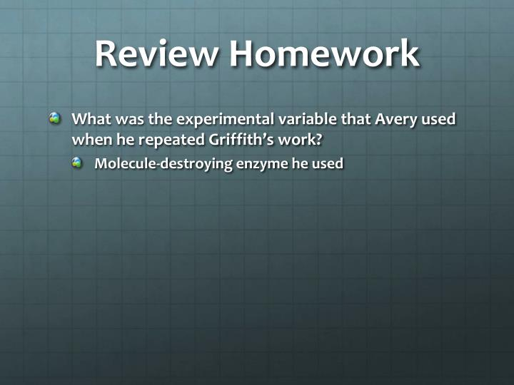 Review Homework