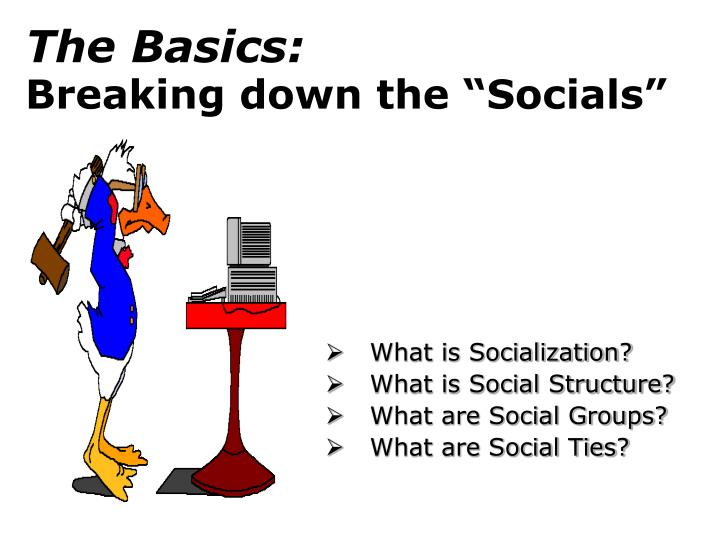 Breaking down the socials