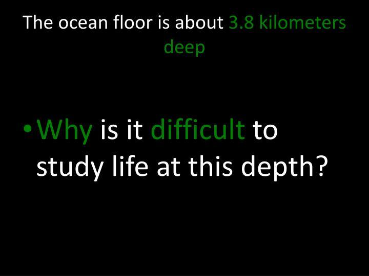 The ocean floor is about