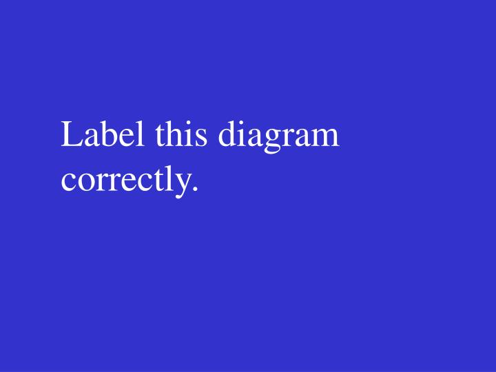 Label this diagram correctly.