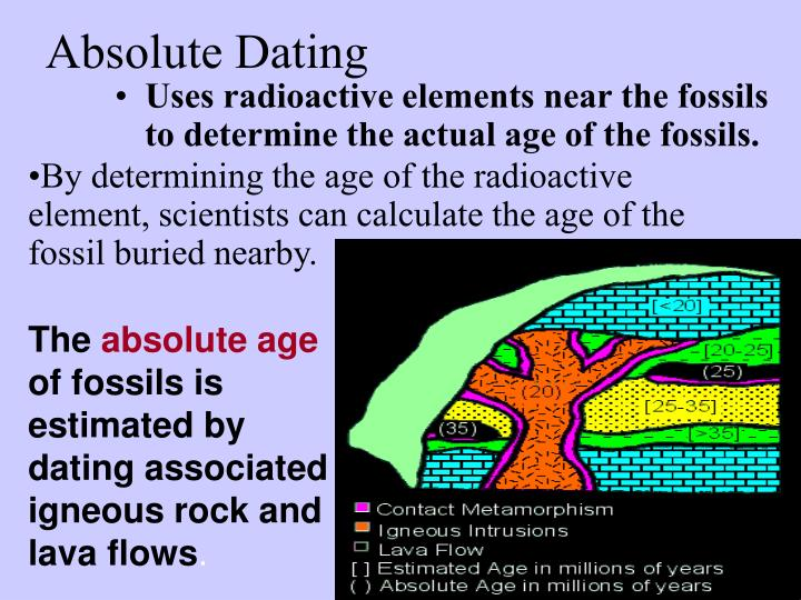 from Dexter how does radiometric dating is used to estimate absolute age