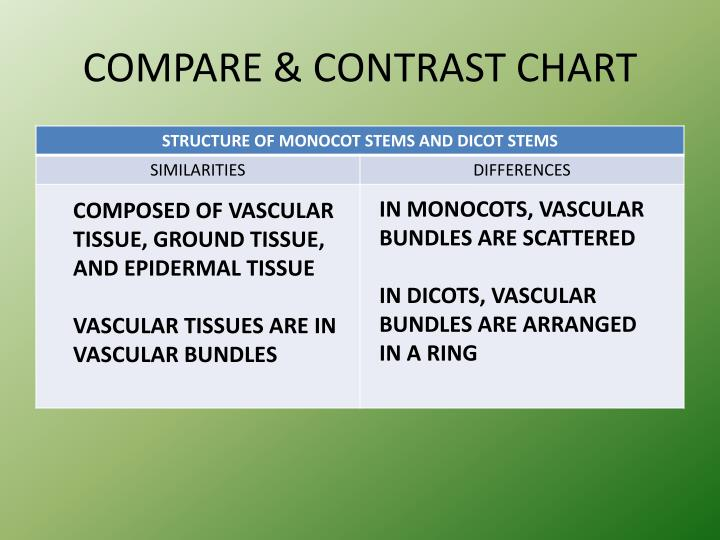 COMPARE & CONTRAST CHART