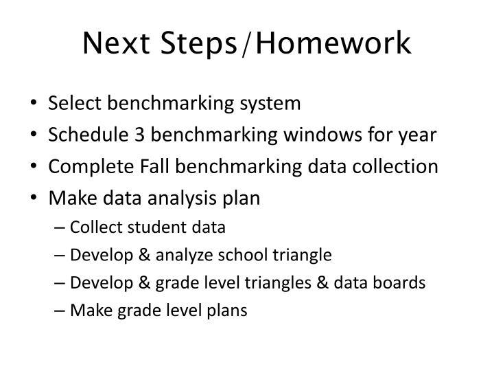 Next Steps/Homework