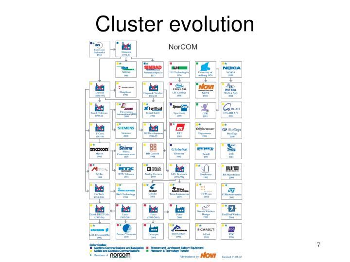 Cluster evolution