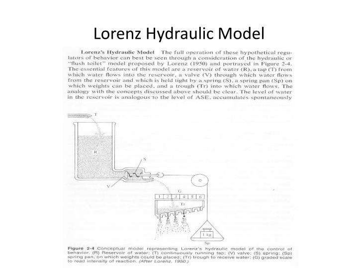 Lorenz Hydraulic Model
