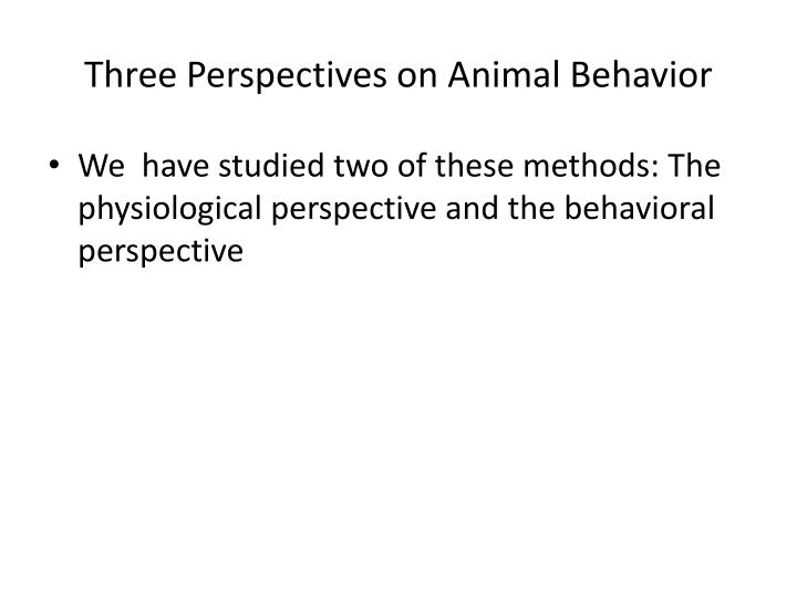 Three perspectives on animal behavior