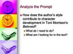 analyze the prompt