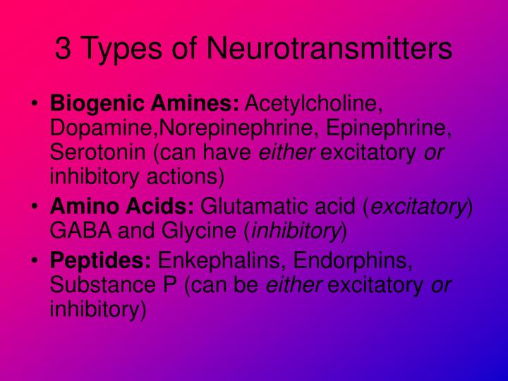 3 Types of Neurotransmitters