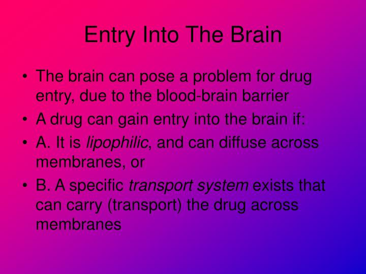 Entry Into The Brain