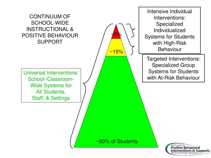 Intensive Individual Interventions:
