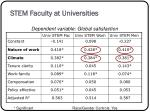 stem faculty at universities