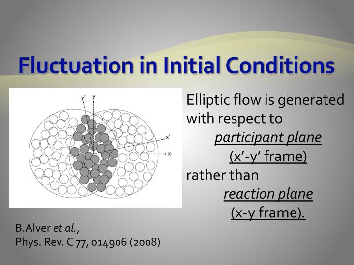 Fluctuation in Initial Conditions