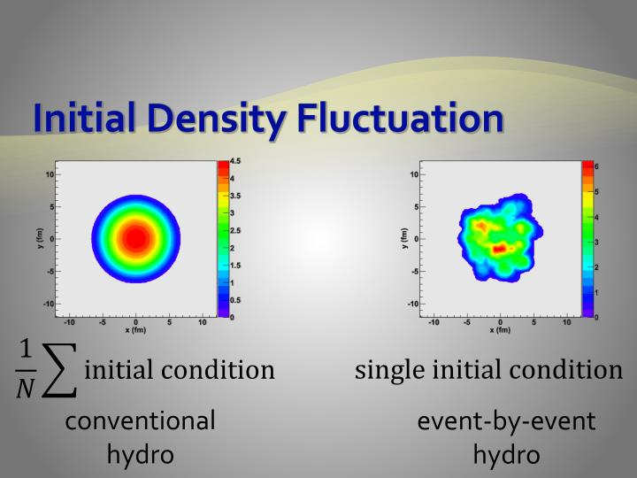 Initial Density Fluctuation