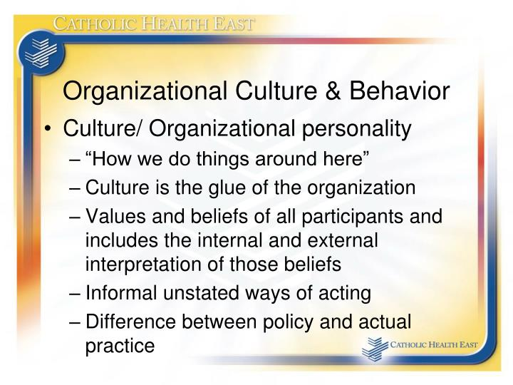 Organizational Culture & Behavior