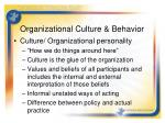 organizational culture behavior