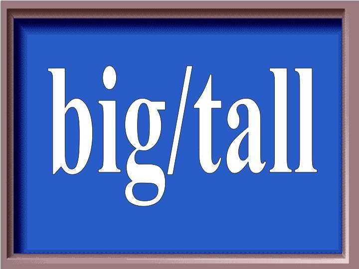 big/tall