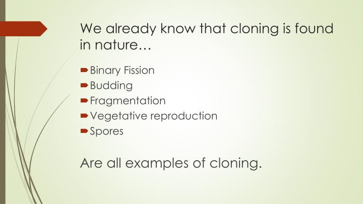 essay about cloning - advantage and disadvantage For the last few decades, cloning was a fictitious idea that lay deep within the pages of some sci-fi novels this idea is always a hope for all human kind because with cloning technology we may expand our life or make our life to be more advanced, something we never had.