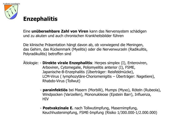 Enzephalitis