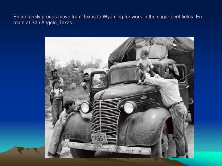 Entire family groups move from Texas to Wyoming for work in the sugar beet fields. En route at San Angelo, Texas.