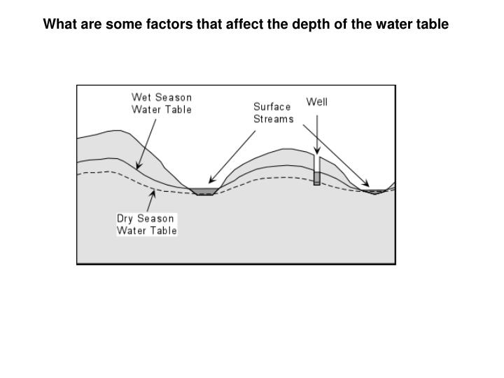 What are some factors that affect the depth of the water table