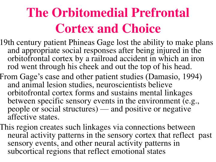 The Orbitomedial Prefrontal Cortex and Choice